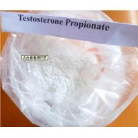 Injective Testosterone Propionate Powder For Metastatic Breast Cancer Cure CAS 57-85-2 Manufactures