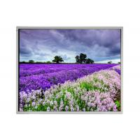 "LM190E05-SL02 LG 19"" IPS TFT LCD Panel for Industrial Application Manufactures"