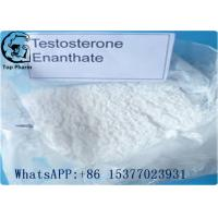 Bodybuilding anabolic steroids Testosterone Enanthate 315-37-7 Test E 99% purity Manufactures