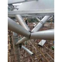 Special Building Steel Frame, Such as Gymnasium, Airport, Landmark building, etc Manufactures