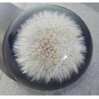 China Crystal Ball with Inside Pciture (JC031CB) on sale