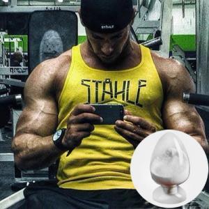 Testosterone Anabolic Steroid Propitocaine Hydrochloride Benzocaine