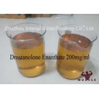 Injectable Anabolic Drostanolone Steroid 200mg / Ml For Bodybuilding CAS 472-61-1 Manufactures