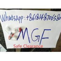 China MGF Human Growth Hormone Peptide Safe Clearance For Europe Market Repair Muscle on sale