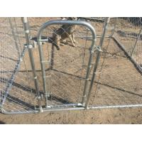 chain mesh dog kennel temporary dog fence 6ft x 10ft x 10ft mesh 60mm x 60mm dog run fence suppliers Manufactures