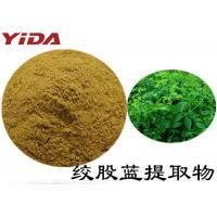 Natural Weight Loss Powder Extracted From Gynostemma Pentaphyllum Tea Manufactures
