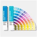 Solid Coated / Uncoated Paper Paint Color Cards 2019 Pantone GP6102A Color Bridge Guide Set Manufactures