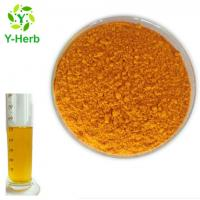 Nano Curcumin Extract Raw Material Bulk Water Soluble Curcumin Powder 10% 20% Manufactures