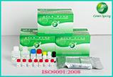 LSY-10017 Enrofloxacin ELISA Test Kit antibiotic residue test kit Manufactures