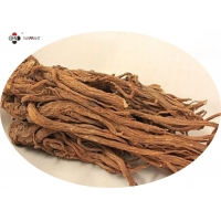 Pharmaceutical Grade Anti Fatigue Angelica Gigas Root Extract Manufactures