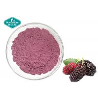 Freeze Dried Mulberry Fruit Powder / Mulberry Fruit Powder in Pink Powder for Beverage Manufactures