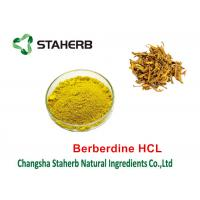 Coptis Chinensis Extract Pure Natural Plant Extracts Berberine HCL 98% Manufactures