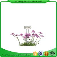 Blue Ribbon Garden Plant Markers / Metal Plant Markers For Garden Pcs/Bag 4 Packing size 22*22*14  Pcs/CTN 30 Manufactures