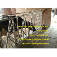 Farm Customized Cow Headlock / Cattle Feeding Panels Hot Dip Galvanizing Pipe Manufactures