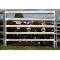 30*60*1.6mm Oval Pipe economic Full Welded Used Horse Corral Panels For Farm Manufactures