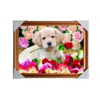 Customised PET Pictures 3D Lenticular Printing Service Stock 3D Image PS Frame Manufactures