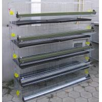 China Layer Quail Cage For Sale & Layer Quail Cage For Poultry Farm Equipment(Whatsapp +86 13331359638) on sale