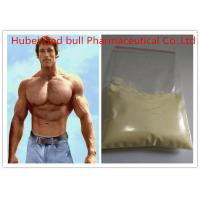 Quality 10161-33-8 Strongest Tren Anabolic Steroid , Light Yellow Raw Steroid Powder for sale