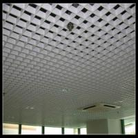 Metal Open Grille Ceiling (TLD-J12) Manufactures