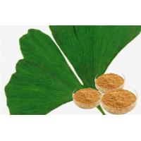 EP9.0 Natural Botanical Ginkgo Extracts For Improving Mental Performance Manufactures