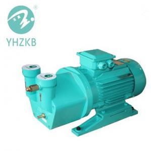 SK-1.5 4kw single stage cast iron material liquid ring vacuum pump Manufactures