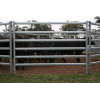 Quality Livestock Fence for sale