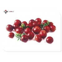 10:1 Food Grade Water Soluble Cranberry Extract Powder Manufactures
