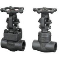 China Cast Iron Clamp forged steel gate valve , NPT Threaded End Connect on sale