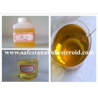 Muscle Building Injectable Anabolic Steroids Equipoise  Boldenone Undecylenate 300mg/ml Manufactures