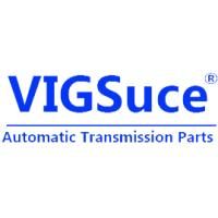 China VIGSuce Auto Parts Company Limited logo