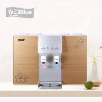 Wall Mounted RO Water Purifier With Heater , Water Filter Machine For Home Manufactures
