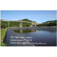 China adaptable pond liners HDPE geomembrane,waterproof geomembrane,high quality HDPE pond liner on sale