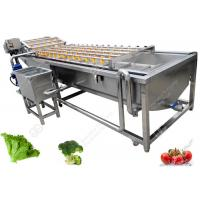 China Leaf Vegetable Washing Machine Fruit And Vegetable Processing Equipment Without Damanage on sale