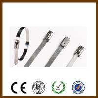 Quality Double Loop Self Locking Stainless Steel Cable Ties Non Flammable Corrosion for sale