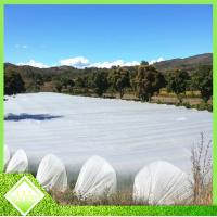 Buy cheap Anti UV PP Spunbonded Agriculture Non Woven Fabric For Plant Keeping Temperature from wholesalers