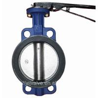 Ductile Iron Wafer Concentric DN100 Lug Butterfly Valve Manufactures