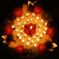 Number Tea light candle Manufactures