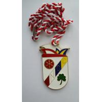 Single sided soft enamel casting NCC metal medallion in gold finish with strings metal medals Manufactures