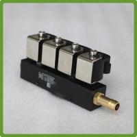 4 Cylinder LPG Rail Injector for Liquid Gas Dosage Systems 12V DC Manufactures