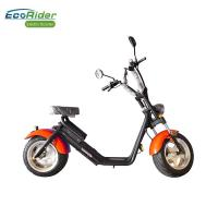 EcoRider fat tire electric bicycle,on off road eletric scooter with remote Manufactures