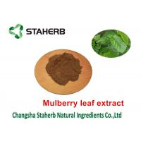 Mulberry Leaf Pure Natural Plant Extracts 1 - DNJ Active Ingredients 12% Powder Manufactures