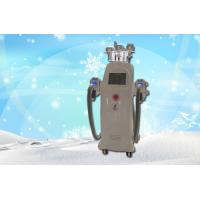 Portable Two Handle Cryotherapy Freeze Fat Machine / Body Shaping Equipment Manufactures