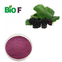 China Dark Purple Fruit Extract Powder Mulberry  Extract Powder With Flavonoids on sale