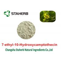 Quality Cas No 86639-52-3 Pure Natural Plant Extracts 7- Ethyl - 10- Hydroxycamptothecin for sale