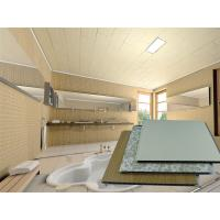 PVC Ceiling Tiles Decorative Shower Wall Cladding Panel Fireproof Manufactures