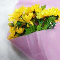 100% PP Non Woven Fabric Products Flower Gift Wrapping Soft Feeling Nontextile Manufactures