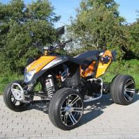CDI250cc Extra Large Size Youth Racing ATV CDI Electric Start System Manual Clutch Manufactures