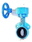 China Cast Iron Flanged Butterfly Valve / Light Weight Sanitary Butterfly Valve on sale