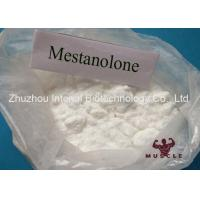 Mestanolone Lean Muscle Building Steroids , Deca Anabolic Steroids With High Purity Manufactures