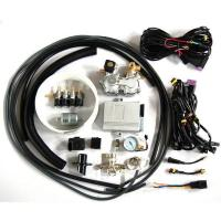 CNG multi point sequential injection system(CNG conversion kits) Manufactures